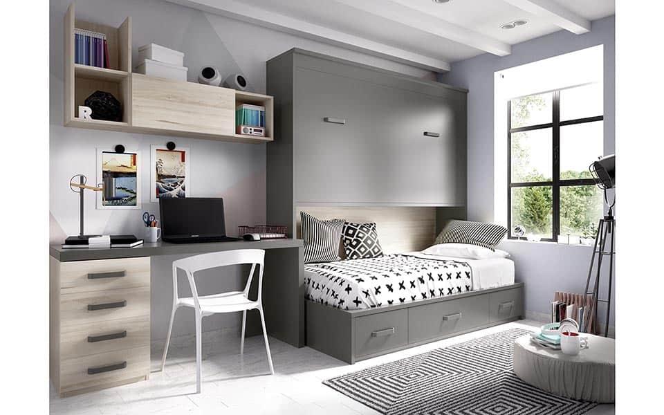 Dos camas, sólo la superior es abatible (cerrada)